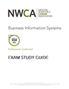 Business Information Systems PDF File
